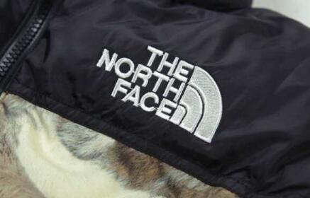 軽量で暖かいSUPREME x the north faceダウンジャケットシュプリームノースフェイスコラボメンズダウンアウター